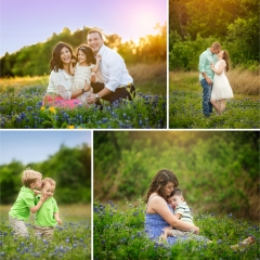 Houston Bluebonnet Photographers SEEM photography Limited Edition Families in Field