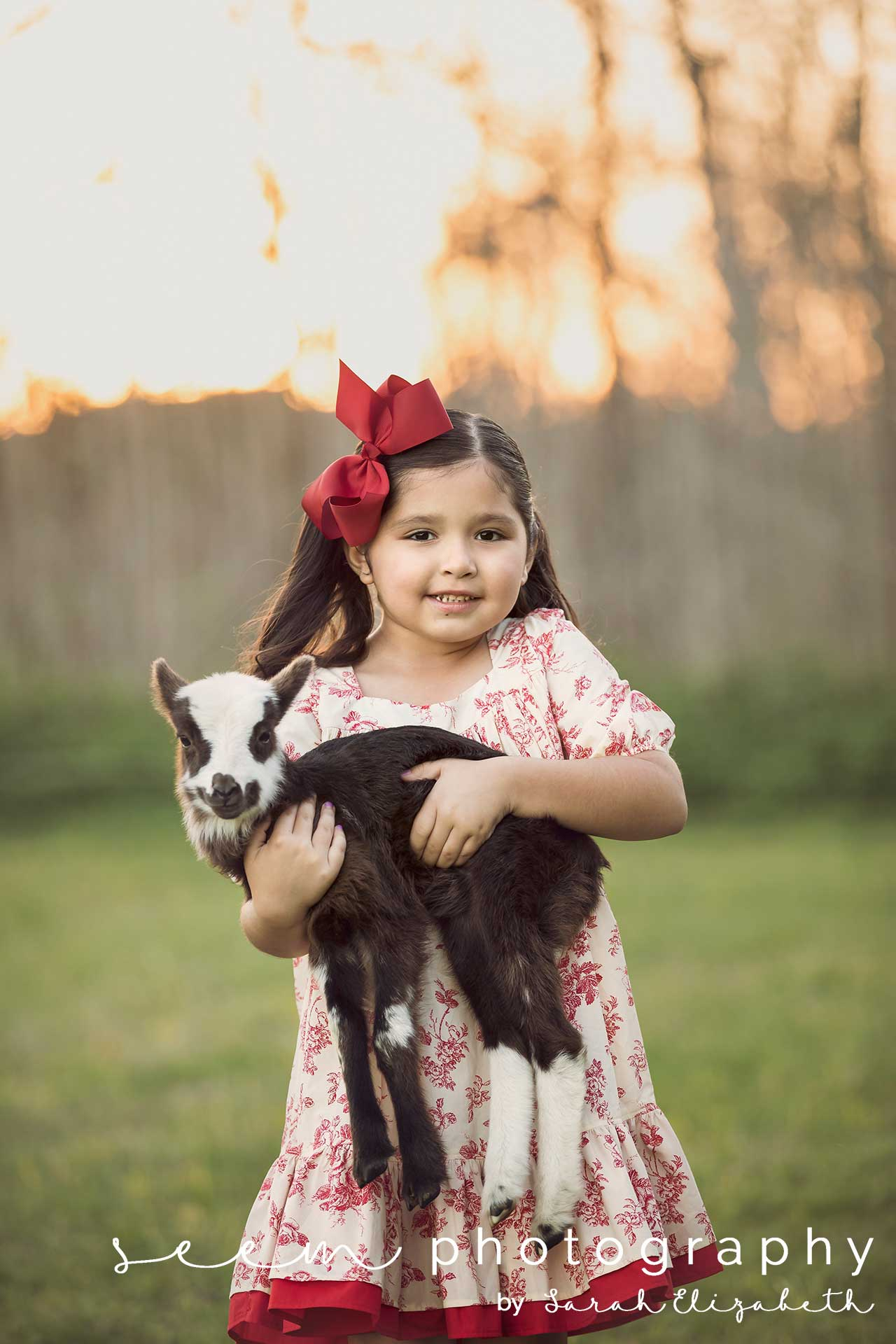 Houston Animal Photographers SEEM photography Goat