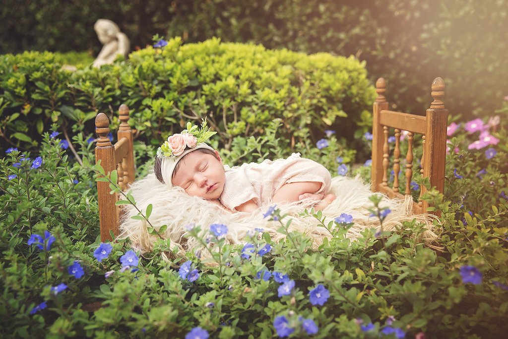 SEEM photography Newborns Sleeping in the Bushes