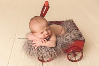 SEEM photography Newborns on a Red Wagon
