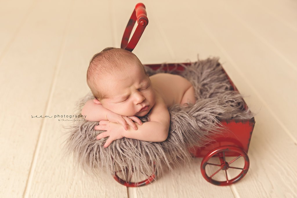 SEEM photography Newborns on a Red Wagon