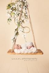 SEEM photography Newborns on a Swing