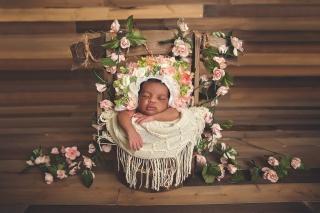SEEM photography Newborns Sleeping in a Well Basket