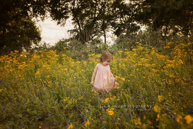 SEEM photography Yellow Field and Bluebonnets